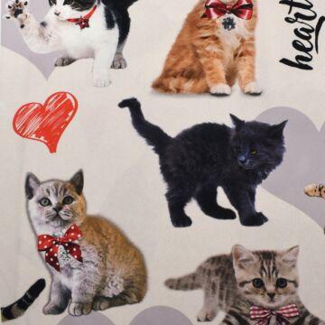 Selyem – Színes macska mintával, PANELES